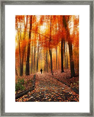 Woodland Walk Framed Print by Jessica Jenney