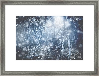 Woodland Wonderland Framed Print by Jorgo Photography - Wall Art Gallery