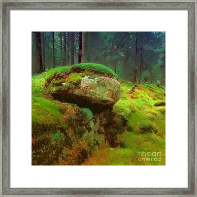 Woodlands Framed Print by Lutz Baar