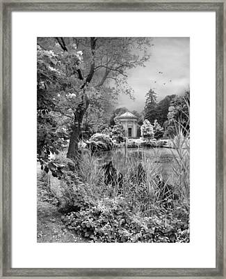 Woodlawn Dreaming Framed Print
