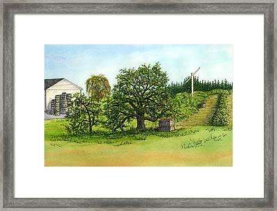 Woodmont Orchard Framed Print by Elaine Farmer