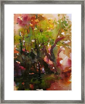 Woods And Creek Watercolor Framed Print by Julianne Felton