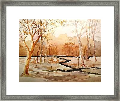 Woods By The Reservoir Framed Print by Larry Hamilton