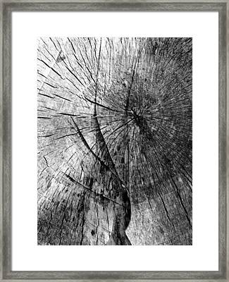 Woodwork...shades Of Grey Framed Print