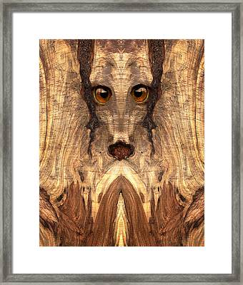 Woody #12 Framed Print