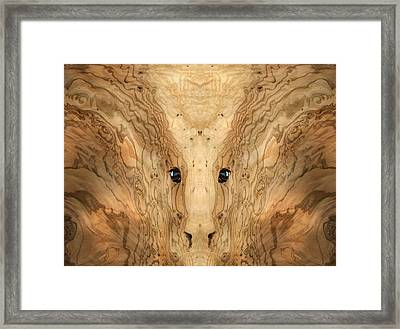 Woody 38 Framed Print