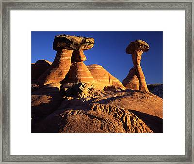 Woody Toadstools Framed Print by Ray Mathis