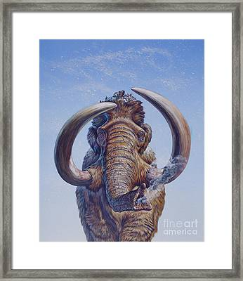 Woolly Mammoth Charging, Pleistocene Framed Print