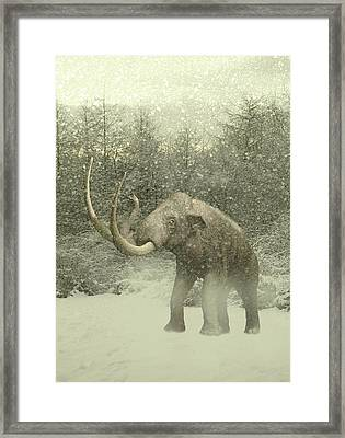 Woolly Mammoth In Snow Framed Print by Victor Habbick Visions