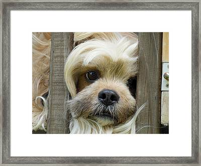 Words Can't Express Framed Print