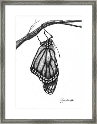 Words Of A Butterfly Framed Print by J Ferwerda