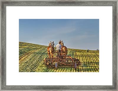 Work Horses Framed Print by Deborah Penland