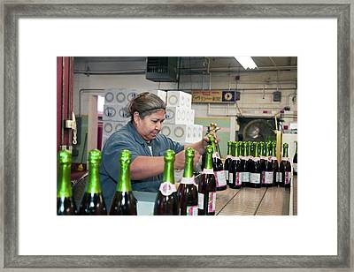 Worker Packing Bottles At A Winery Framed Print