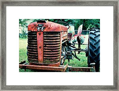 Workhorse Framed Print by Patricia Greer