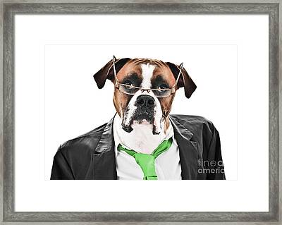 Working Like A Dog Framed Print by Jt PhotoDesign
