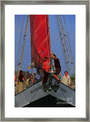 Working The Sails Framed Print by Kathleen Struckle