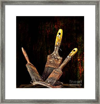Framed Print featuring the photograph Workout by Shirley Mangini