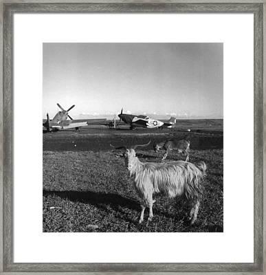 World War II: Airfield Framed Print by Granger