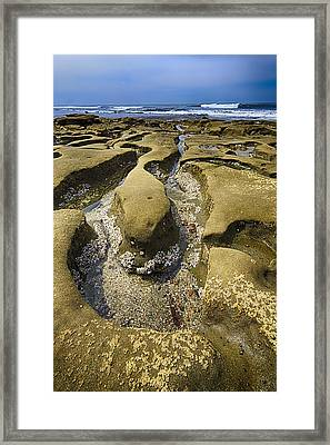 Wormwood 2 Framed Print by Scott Campbell