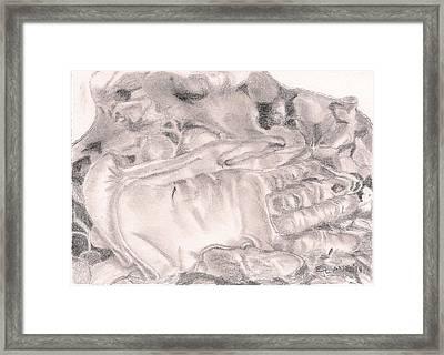 Worn Framed Print by Elizabeth Lane