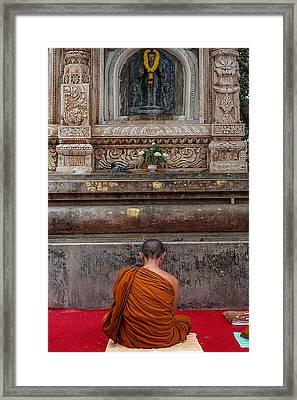 Worshiping Budha Framed Print by Mukesh Srivastava