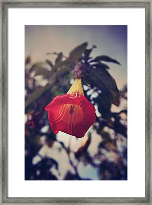 Worth It All Framed Print by Laurie Search