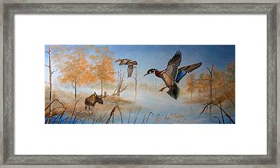Would Duck Framed Print by Whitey Thompson