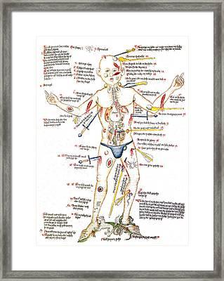 Wound Man, 1420s Framed Print