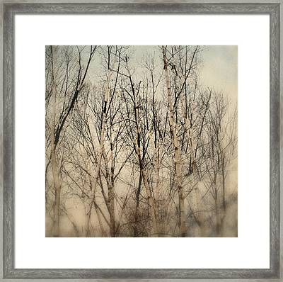 Wrapped In Snow Framed Print by Michelle Ayn Potter