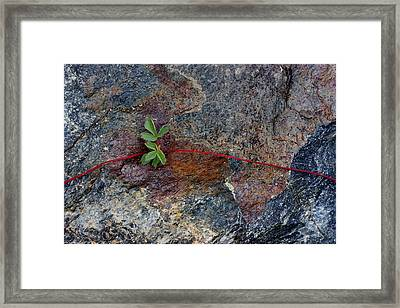 Wrapped Rock Framed Print