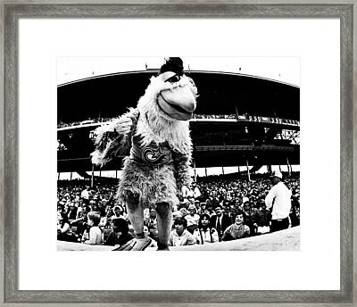 Wrigley Field Chickenman  Framed Print by Retro Images Archive