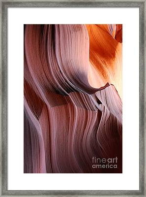 Wrinkles  Framed Print by Catherine Lau