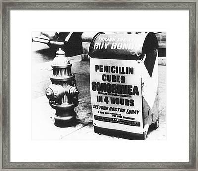 Wwii Penicillin Advert Framed Print