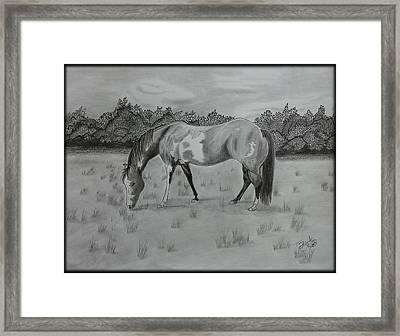 Wyatt Framed Print by Tony Clark