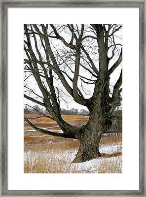 Wyeth Country Framed Print by Gordon Beck