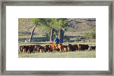 Wyoming Country Framed Print