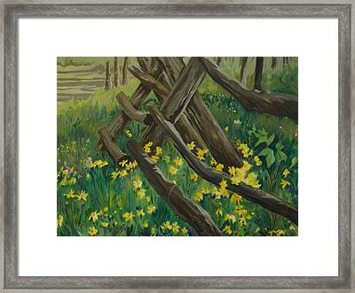 Wyoming Summer Framed Print by Terry Holliday