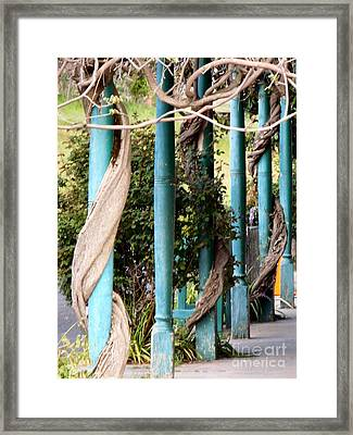 Wysteria Wrapped Framed Print
