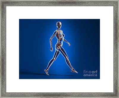 X-ray View Of A Naked Woman Walking Framed Print