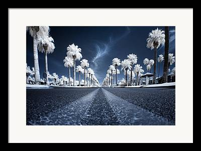 City Street Framed Prints