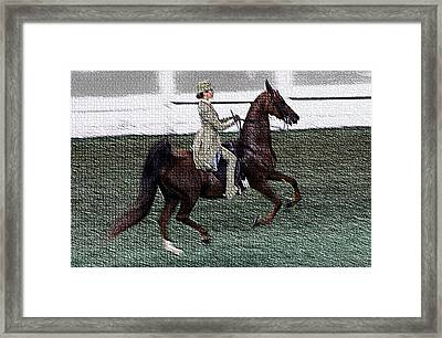 Xivd - World Championship Horse Show - Louisville Ky Framed Print by Thia Stover
