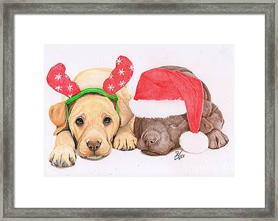 Xmas Pups Framed Print by Deborah Nicholas
