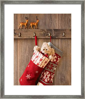 Xmas Stockings Framed Print by Amanda Elwell