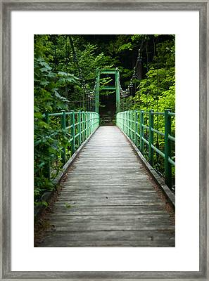 Framed Print featuring the photograph Yagen Forest Bridge by Brad Brizek
