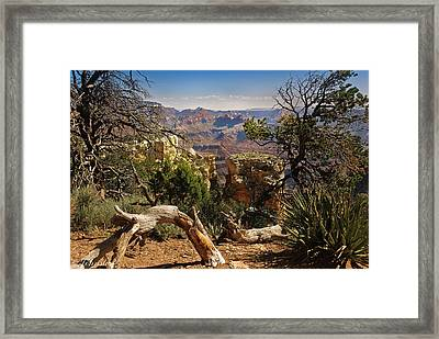 Yaki Point 4 The Grand Canyon Framed Print by Bob and Nadine Johnston