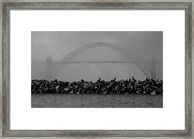 Yaquina Bay Bridge Under Fog Framed Print by Mark Kiver