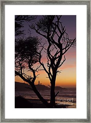 Yaquina Head Dusk Sixty Framed Print by Donald Sewell