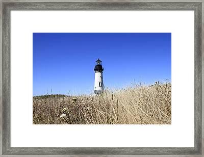 Yaquina Head Lighthouse Framed Print by David Gn