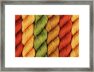 Yarn With A Twist Framed Print