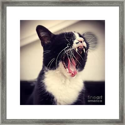 Yawn Like You Mean It Framed Print by Trish Mistric